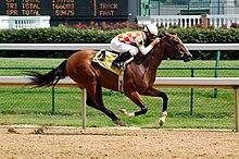 220px-Horseracing_Churchill_Downs.jpg